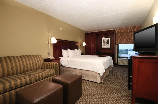Hampton Inn Detroit / Madison Heights / South Troy: King Deluxe