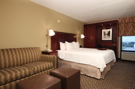 Hampton Inn Detroit / Madison Heights / South Troy : King Deluxe