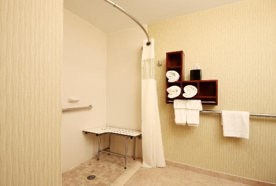 Hampton Inn Detroit / Madison Heights / South Troy: Accessible Roll In Shower