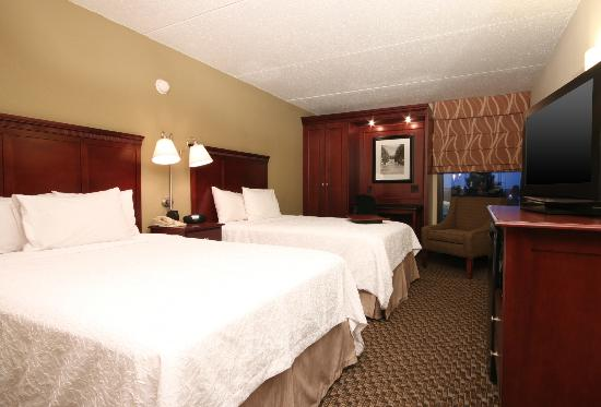Hampton Inn Detroit / Madison Heights / South Troy : Two Queen beds