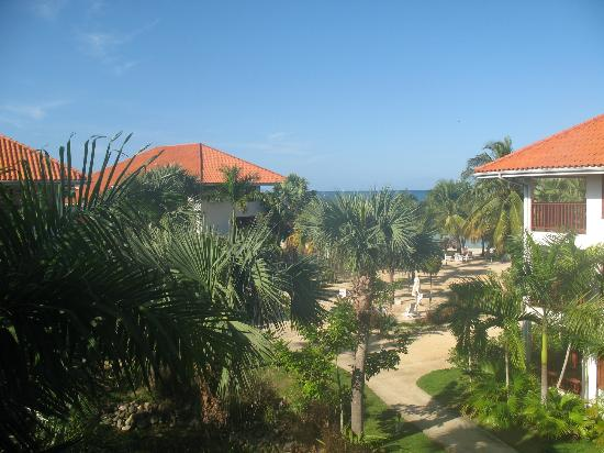View from our Gardenview Veranda Suite