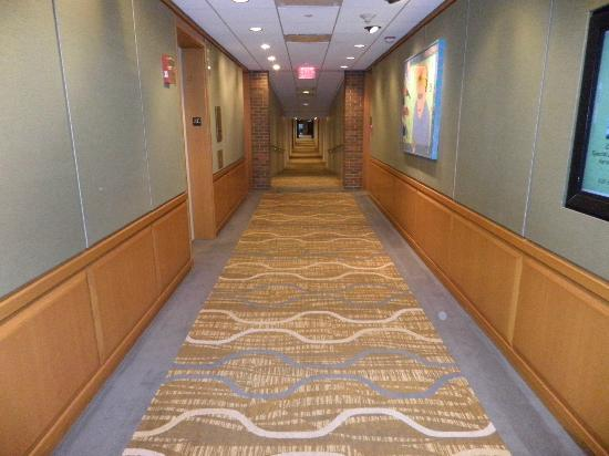 The Hyatt Lodge at McDonald's Campus: hall ways
