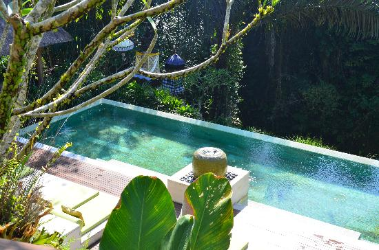 The Purist Villas and Spa: Main pool from hill villa