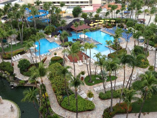 Hyatt Regency Aruba Resort And Casino Palm Beach Reviews