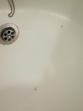 Hyatt Regency Jeju: bathtub needs to be replaced