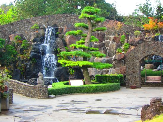 bonsai with waterfall picture of spirited garden jeju tripadvisor
