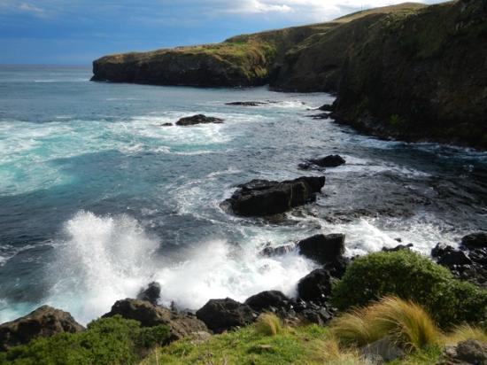 Sam's Peninsula Off Road Tours.: Breathtaking!