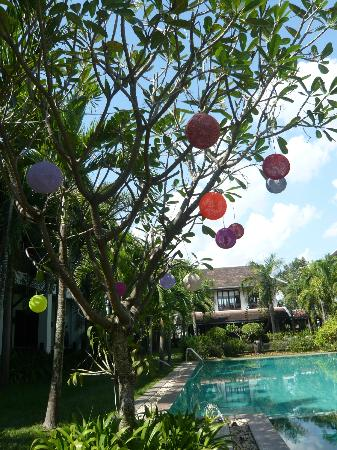 Green Park Boutique Hotel: Ball lights in frangipani tree beside pool