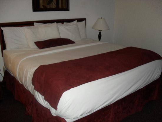 LivINN Hotel Minneapolis South / Burnsville: Huge King bed was a dream!