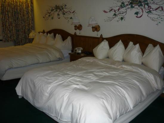 Enzian Inn: Our room