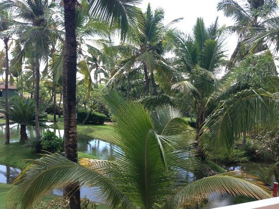 Excellence Punta Cana: Garden View from our room