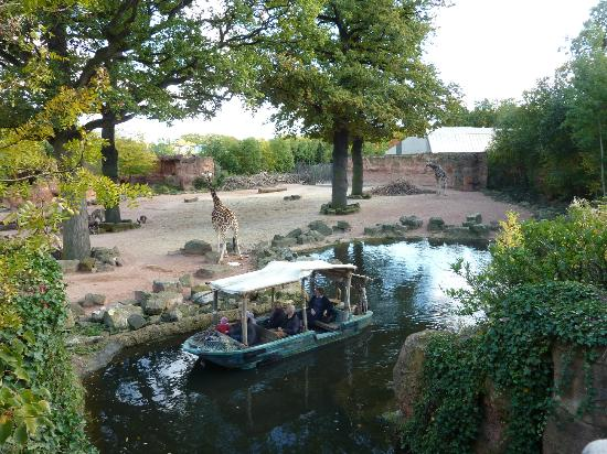 Erlebnis Zoo Hannover: Take the river cruise, it is lovely