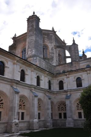 Monasterio de la Vid