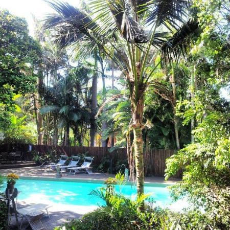 Gaia Retreat & Spa: The amazing pool 