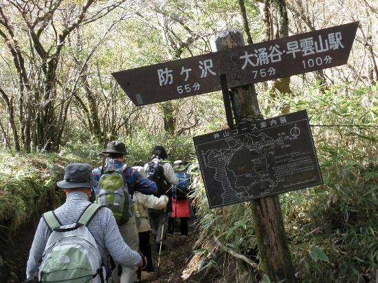 Mt. Kamiyama: 山頂とお中道の分岐点