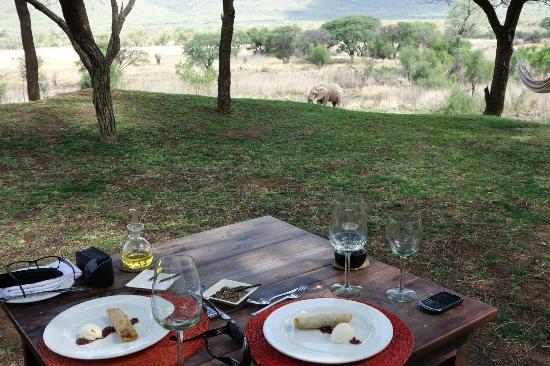 Marataba Safari Lodge: Elefant beim Lunch