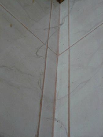 Alounsavath Guesthouse: Tela araña baño