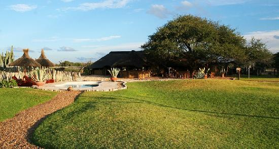 Harnas Wildlife Foundation and Guest Lodge: Lapa area