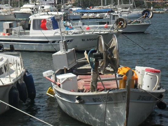 Citadelle Saint Florent : ancora barche da pesca