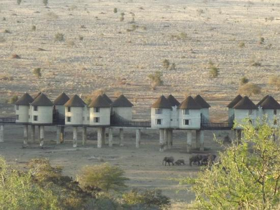 Voyager Beach Resort: Saltlick Game Lodge