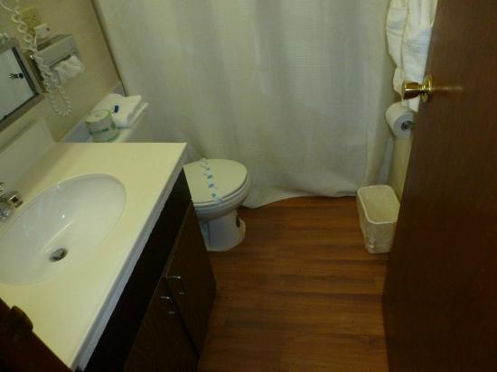 Budget Inn Ontario: Cuarto de baño