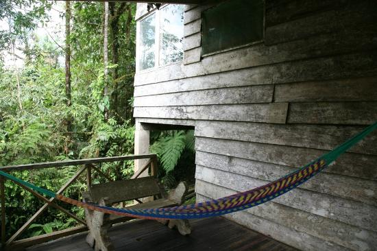 Rara Avis Rainforest Lodge & Reserve: Riverside cabin
