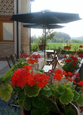 Bed & Breakfast Carpe Diem : Courtyard