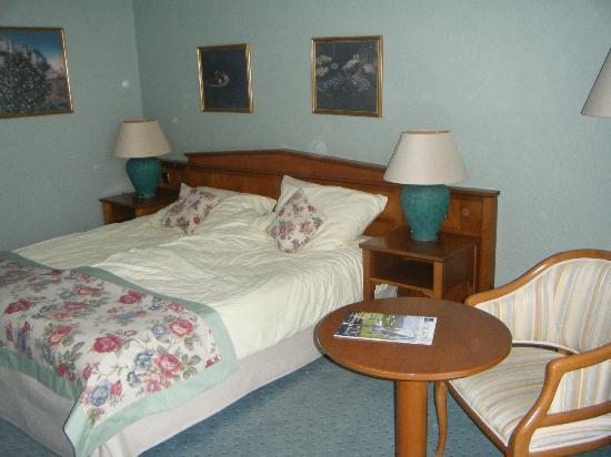 Hotel Am Schlosspark: Room