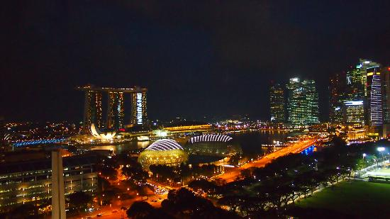 Fairmont Singapore : View from Lounge