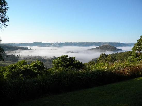 Maleny Luxury Cottages: Misty morning view - taken from lookout on grounds next to cabin.