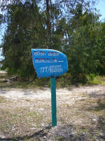 Bush Baby Bungalow: Schild von der Straße aus