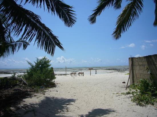 Bush Baby Bungalow: Strandzugang