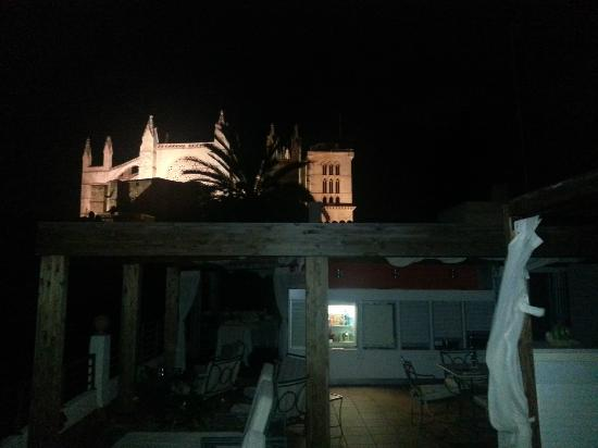 Hotel Palacio Ca Sa Galesa: Terraza