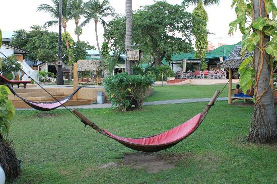 Samui Pier Resort: jardin