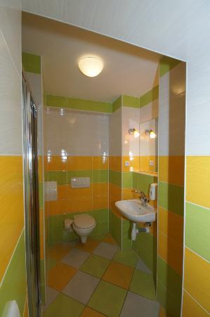 Garni Rambousek: Bathroom with a big shower