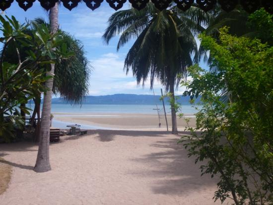 Phangan Rainbow Bungalows: View from room