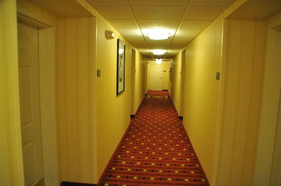 Residence Inn Fort Collins: Hallway