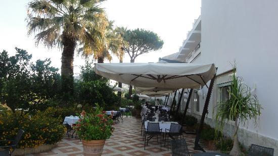 هوتل ألفا: Petit-déjeuner en terrasse, au paradis 
