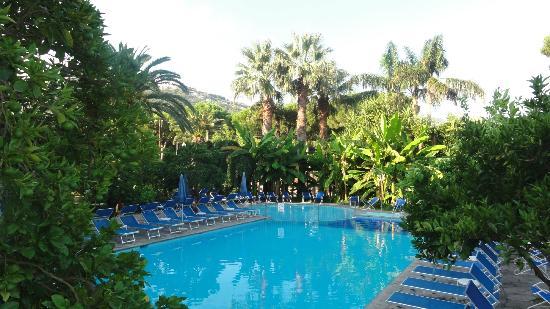 Alpha Hotel: La piscine
