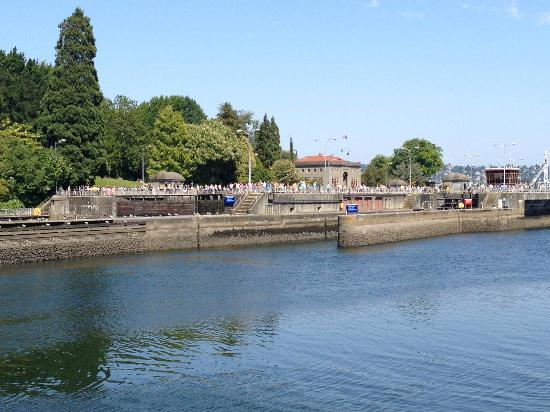 "Hiram M. Chittenden Locks: Looking at the locks ""from the far side"""
