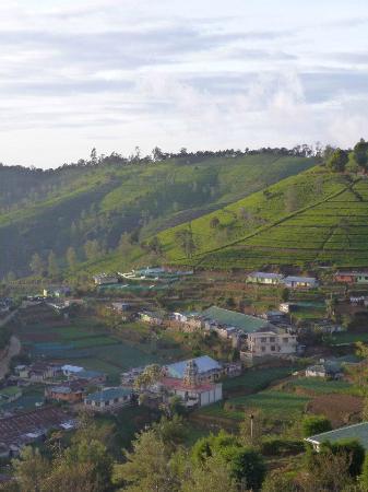 Heritance Tea Factory: vue de la chambre