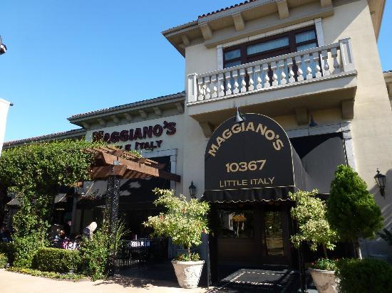 Good Italian Restaurants In Jacksonville Fl