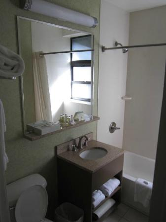 The Hotel at Times Square: Our room's bathroom