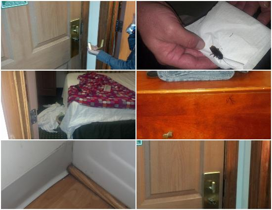Home Towne Suites - Columbia: Dirty Room Collage