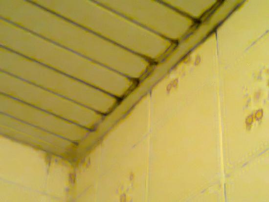 Castelmar Hotel: Filthy bathroom 1