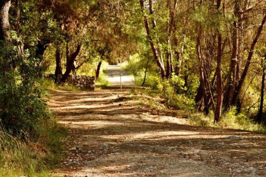 Karatepe : Path leading to the summer palace of the Hittite king
