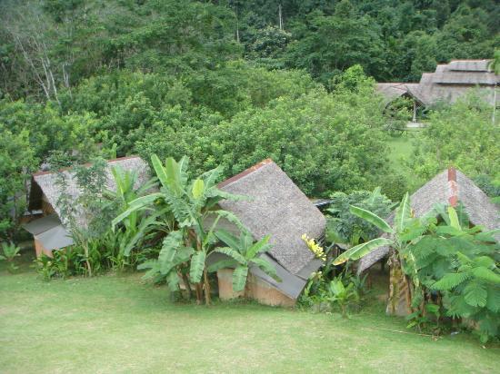 The Cliff & River Jungle Resort: Vue générale