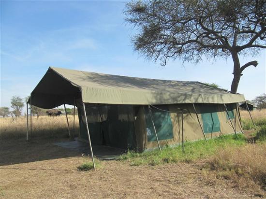 Serengeti Halisi Camp: Sleeping Tent outside