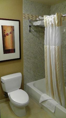 Hilton Garden Inn Salt Lake City Downtown : Badezimmer