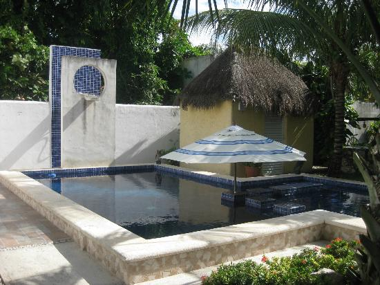 Villa Escondida Cozumel Bed and Breakfast: the pool